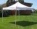 10 x 10 White Canopy - No Sides - 88000